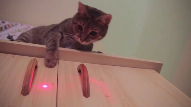 Circuit Question Laser Pointer Forums Discuss Laser Pointers