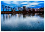 As The Evening Sky Grew Dark Dusk, South Pond, Lincoln Park