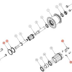 E13 - Kit manutenzione ruota libera (cricchetti, molle, guarnizione ed anello)