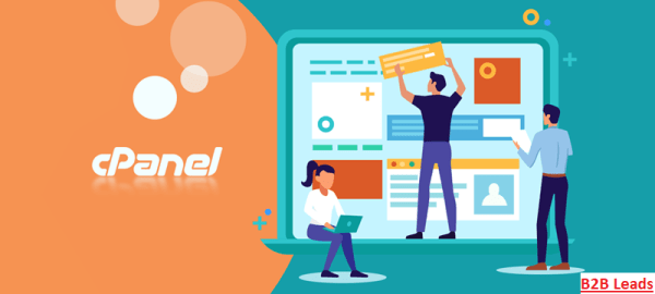 cPanel hosting, best hosting service in India - B2B Leads