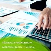 tecnico financiero