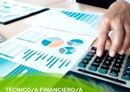 tecnico financiero