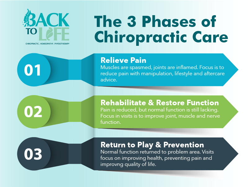 Back2Life_Infographics_Chiro_Phases