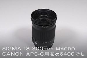SIGMA 18-300mm F3.5-6.3 DC MACRO