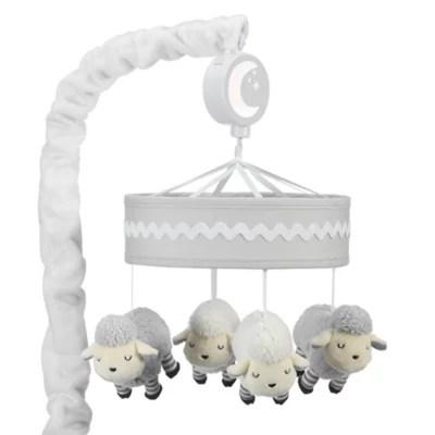 lambs ivy little sheep