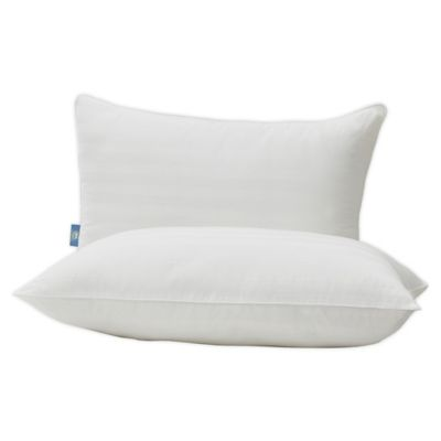 serta perfect sleeper 2 pack smart defense standard queen bed pillows