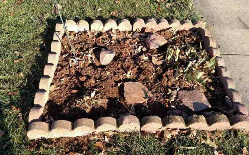 Scalloped Brick Edging