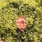 Olive love.