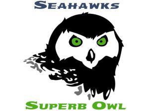 Seahawks Superb Owl