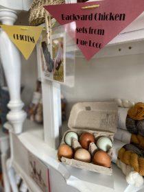 My backyard eggs!