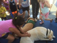 National Night Out at Target 8-2-16 (64)