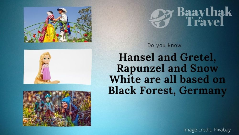 The Balck Forest - Baaythak Travel Facts