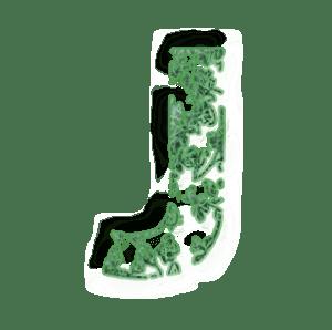 Jvert