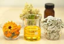 Gyógynövények a terhesség alatt