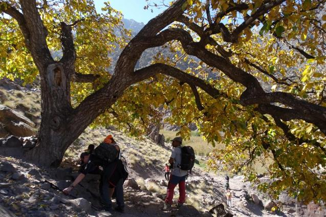 Morocco_High_Atlas_Toubkal_refuge_39