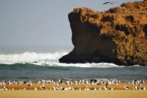 Morocco_Oualidia_11