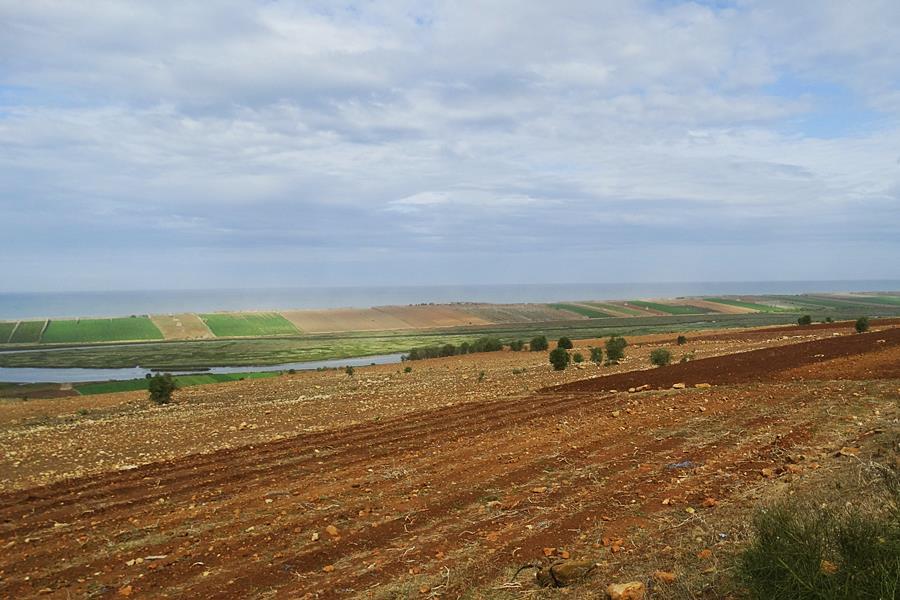 Morocco_Oualidia_26