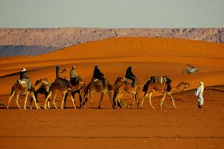 Morocco_trip_Middle_High_Atlas_Sahara_13