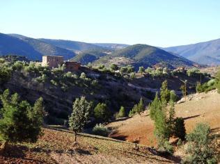 Morocco_Ouzoud_Falls_32