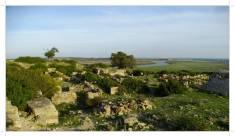 Morocco.Larache.Lixus.roman.ruin.22