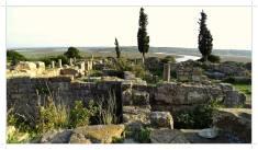 Morocco.Larache.Lixus.roman.ruin.29