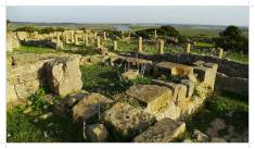 Morocco.Larache.Lixus.roman.ruin.30