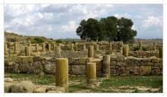 Morocco.Larache.Lixus.roman.ruin.32