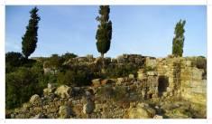Morocco.Larache.Lixus.roman.ruin.36
