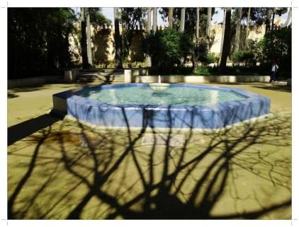 morocco_fez_jnane_sbil_garden_14