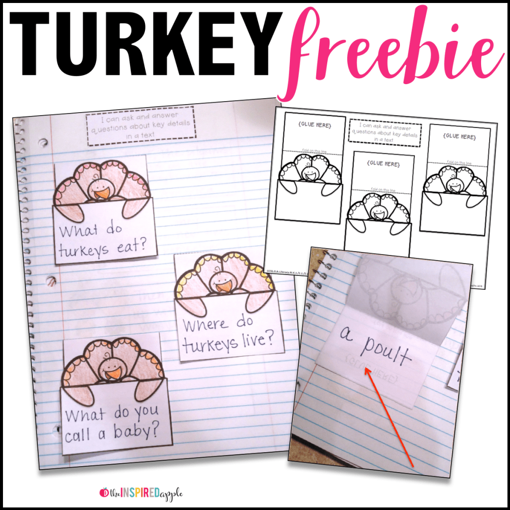 Turkey Activities For The Primary Classroom