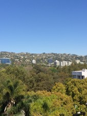 Beverly Hills View