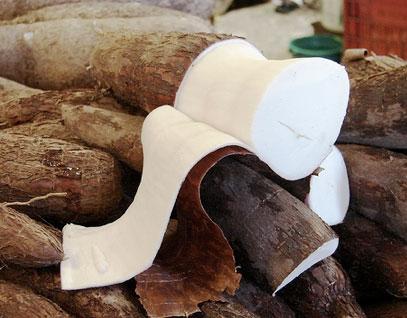 fibras-plastico-biodeagradavel