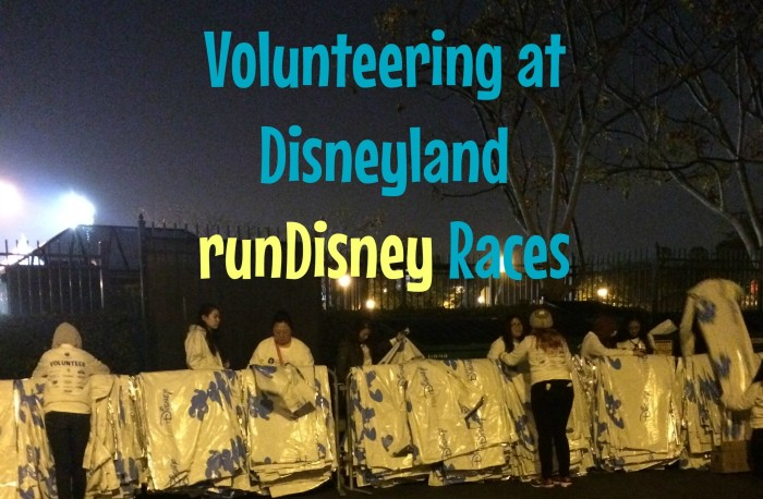 volunteer mylar rundisney