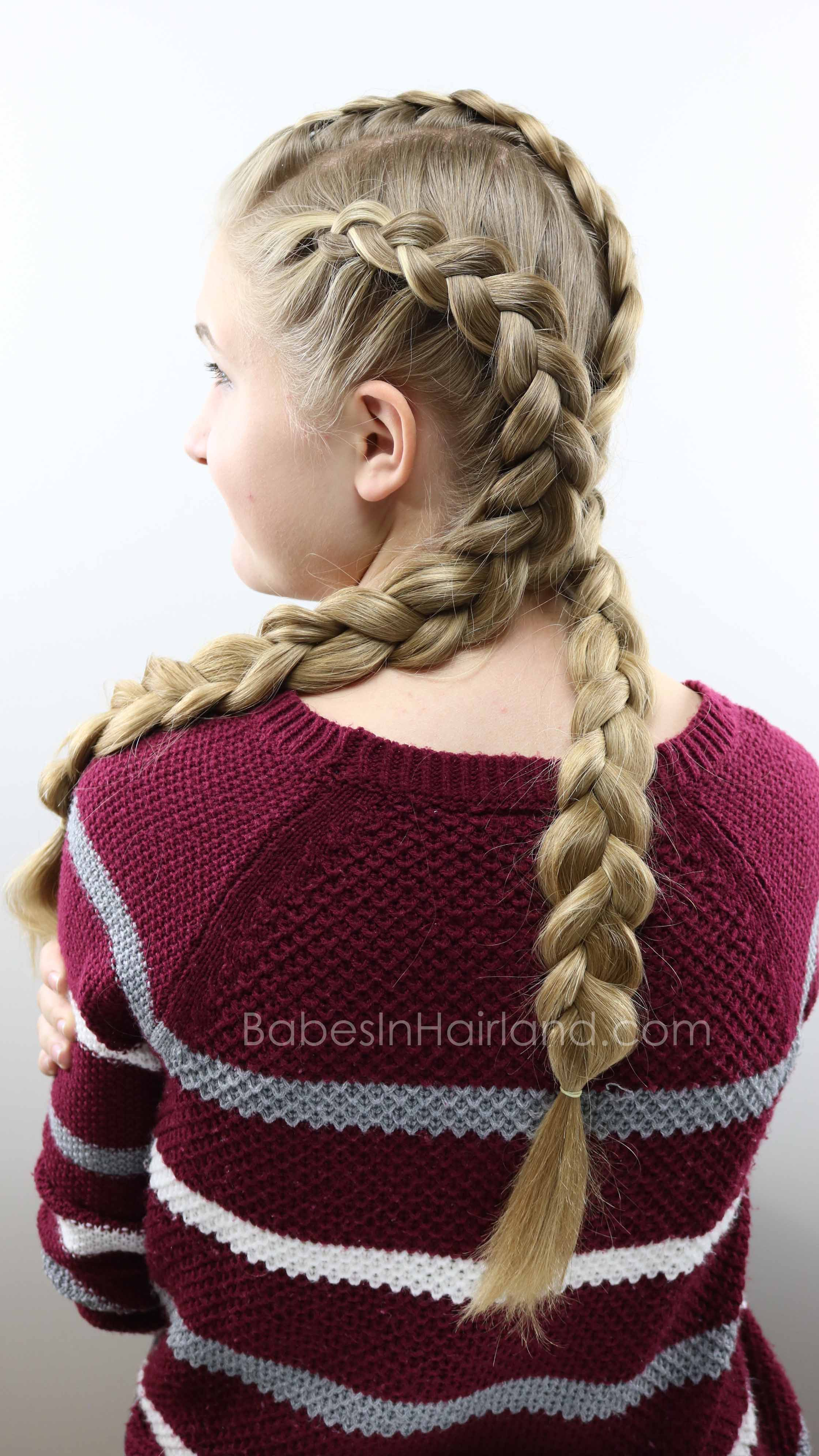 Triple Double Dutch Braids Hairstyle Beautiful School