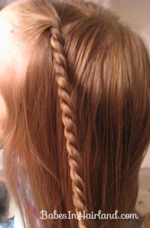 Rope Braids into a Braid (3)