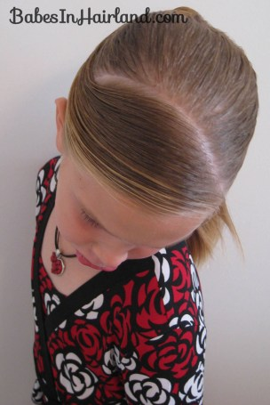 Fancy Wrapped Ponytail (14)