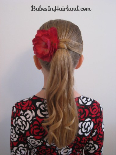 Fancy Wrapped Ponytail (16)