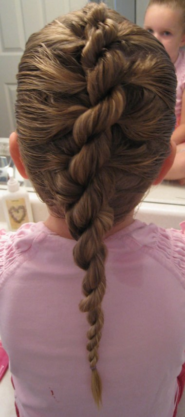 Rope/Twist Braid - French Style (2)