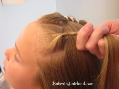 Hair Fancy's Hairstyle (6)