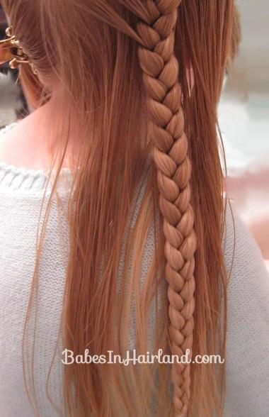 Pretty Pocahontas Braids (4)