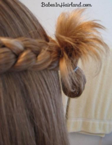 Simple Braids & a Turkey Tail (7)