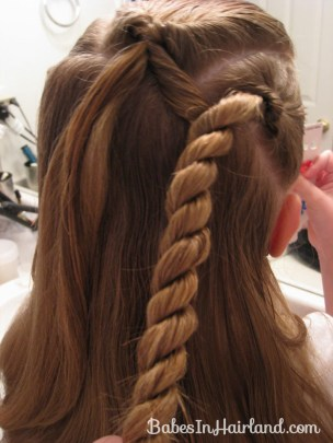 Rope Braids and Ribbon (8)