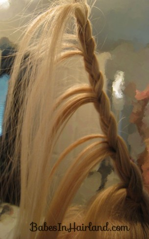 Cascade/Feathered Braid Hairstyle (3)