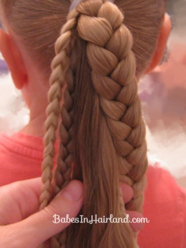 Ponytails and Braids Hairstyle (6)