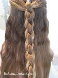 Ponies to a 4 Strand Braid - Babes In Hairland