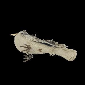 linnen vogeltje met een hartje als cloaca