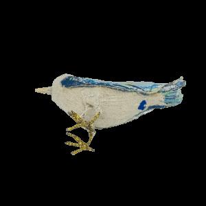 king de vogel heeft een blauwe hartvormige cloaca kenmerkend voor babetteswereld