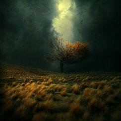 Photomanipulations by kokoszkaa