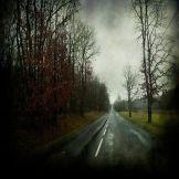 Julien-Coquentin-Strange-rain4