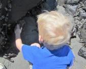 Petting a sea anemone